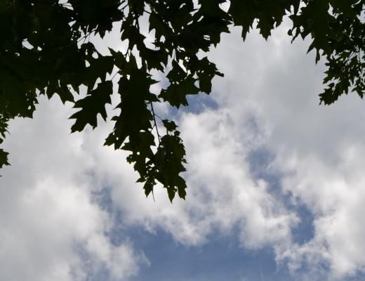 Clouds 8:2013
